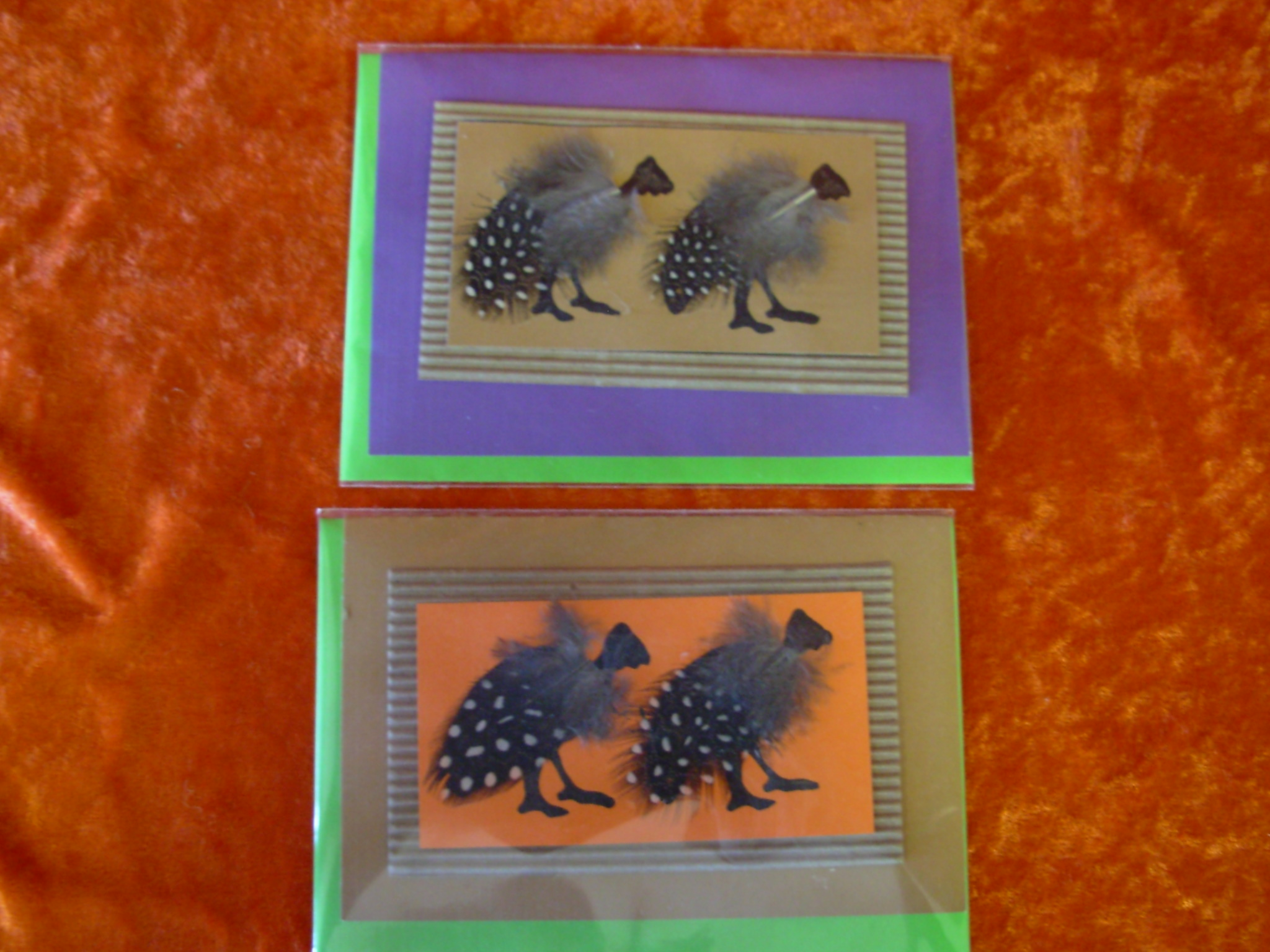 Greeting Card & Envelope (Feathered Bird)